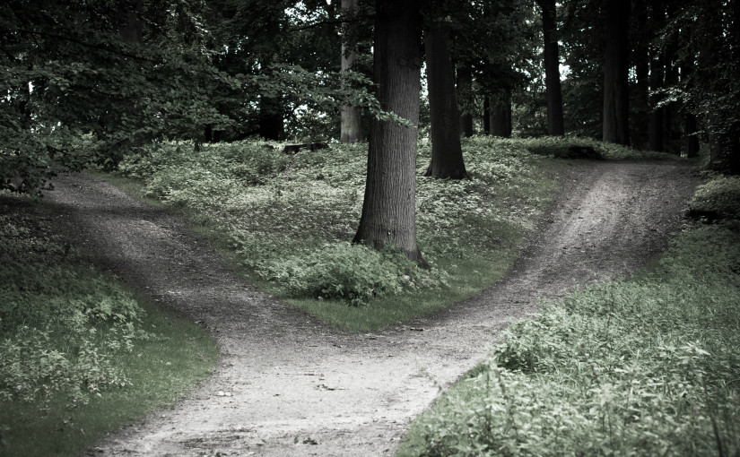 Jak podjąć naprawdę dobrą decyzję?